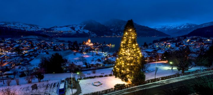 Large Christmas tree, Spiez, Switzerland