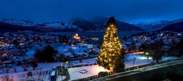 Large Christmas tree, Spiez, Switzerland