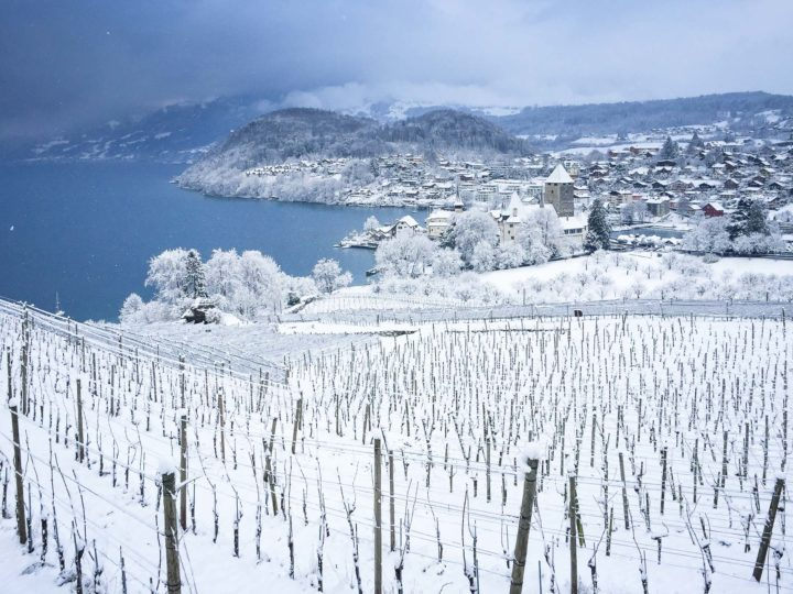 Snow on Spiezberg