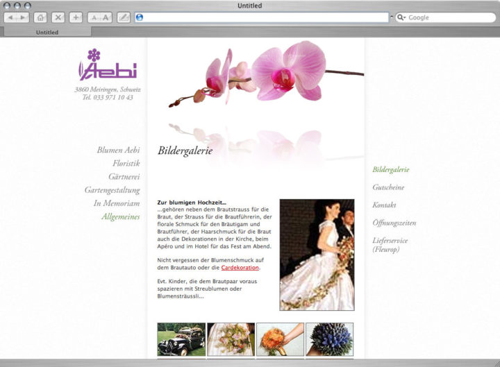 Web design for Blumen Aebi