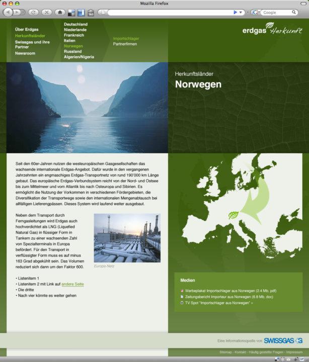 Web design for Erdgas