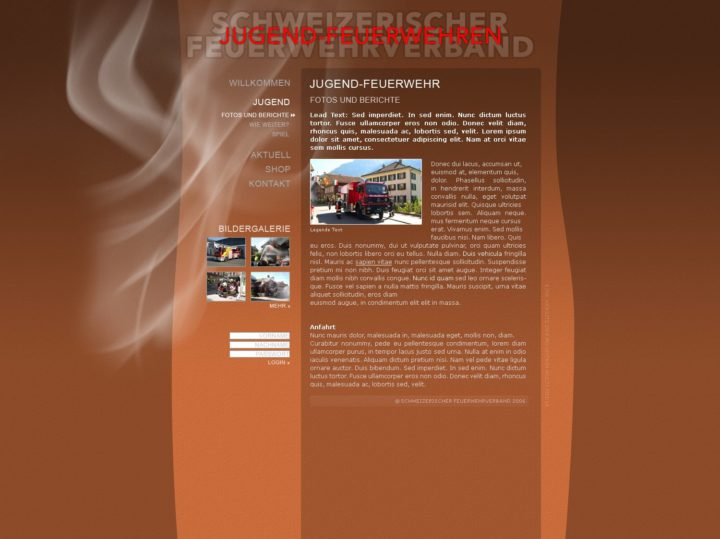Web design Swiss Youth Fire Brigade