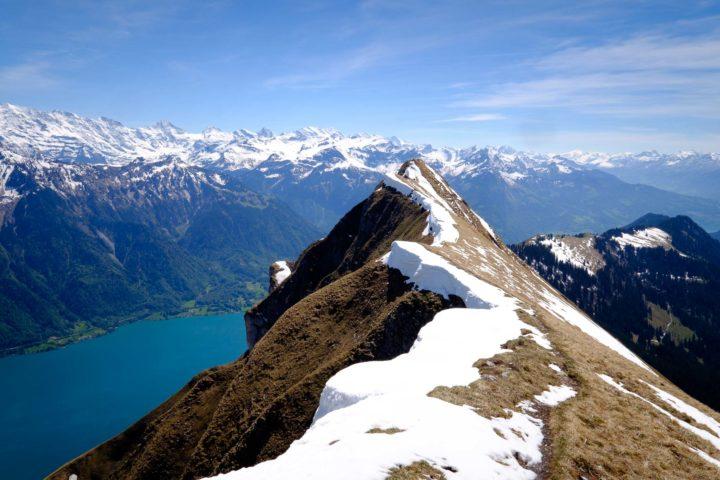 Suggiture, Switzerland
