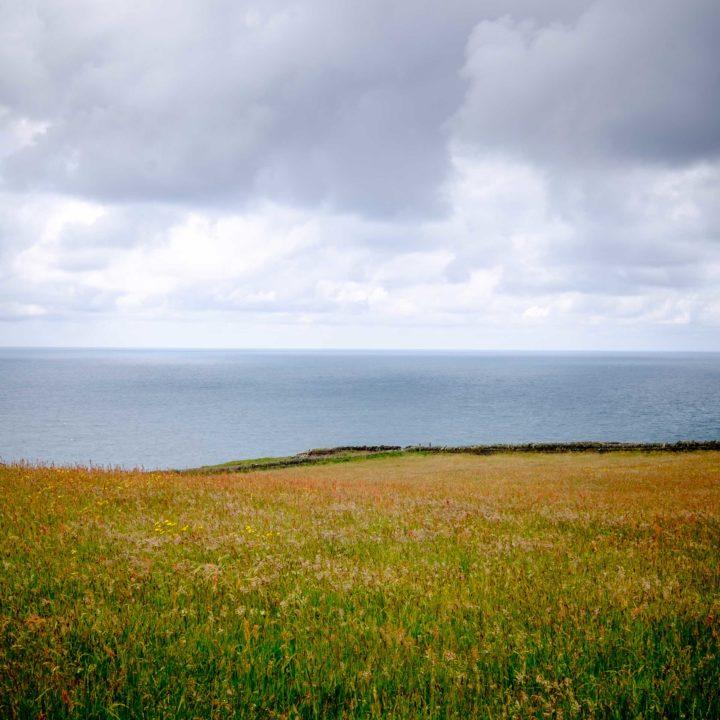 The coast at Tintagel