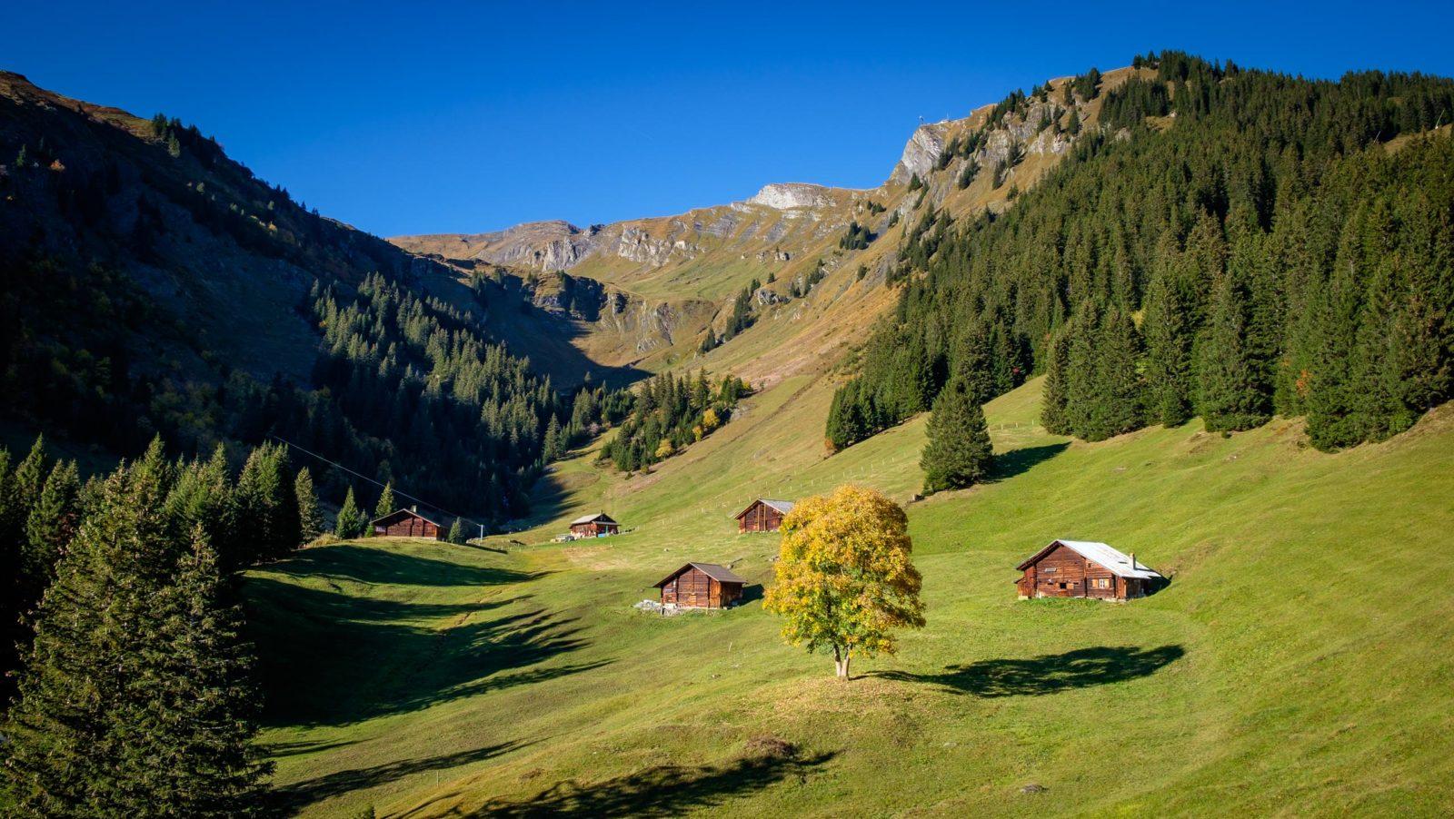 Grindelwald, Switzerland