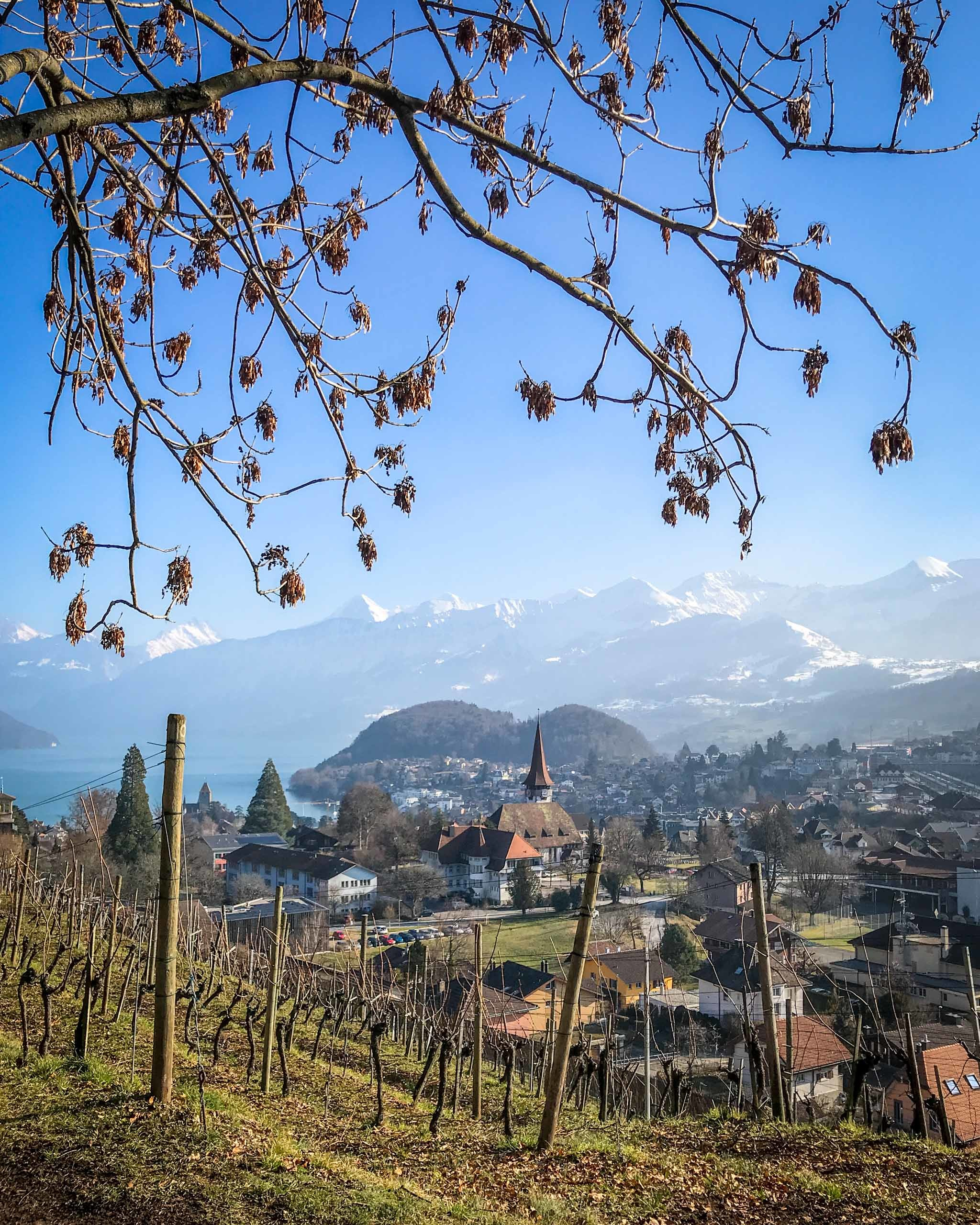 Winter walk in Spiez