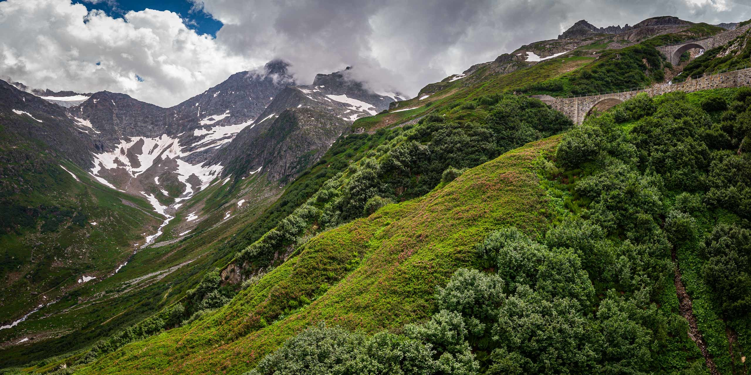 Drone photograph of the Alpenrose in bloom next to the Susten Pass road.