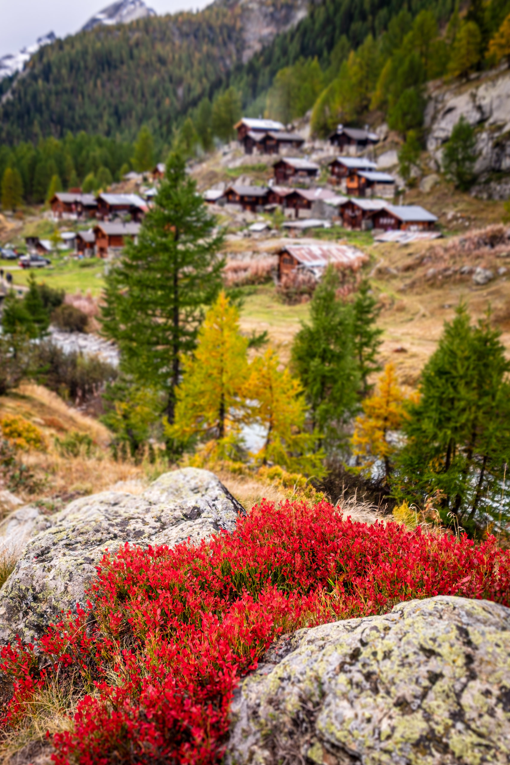 Autumn at Fafleralp