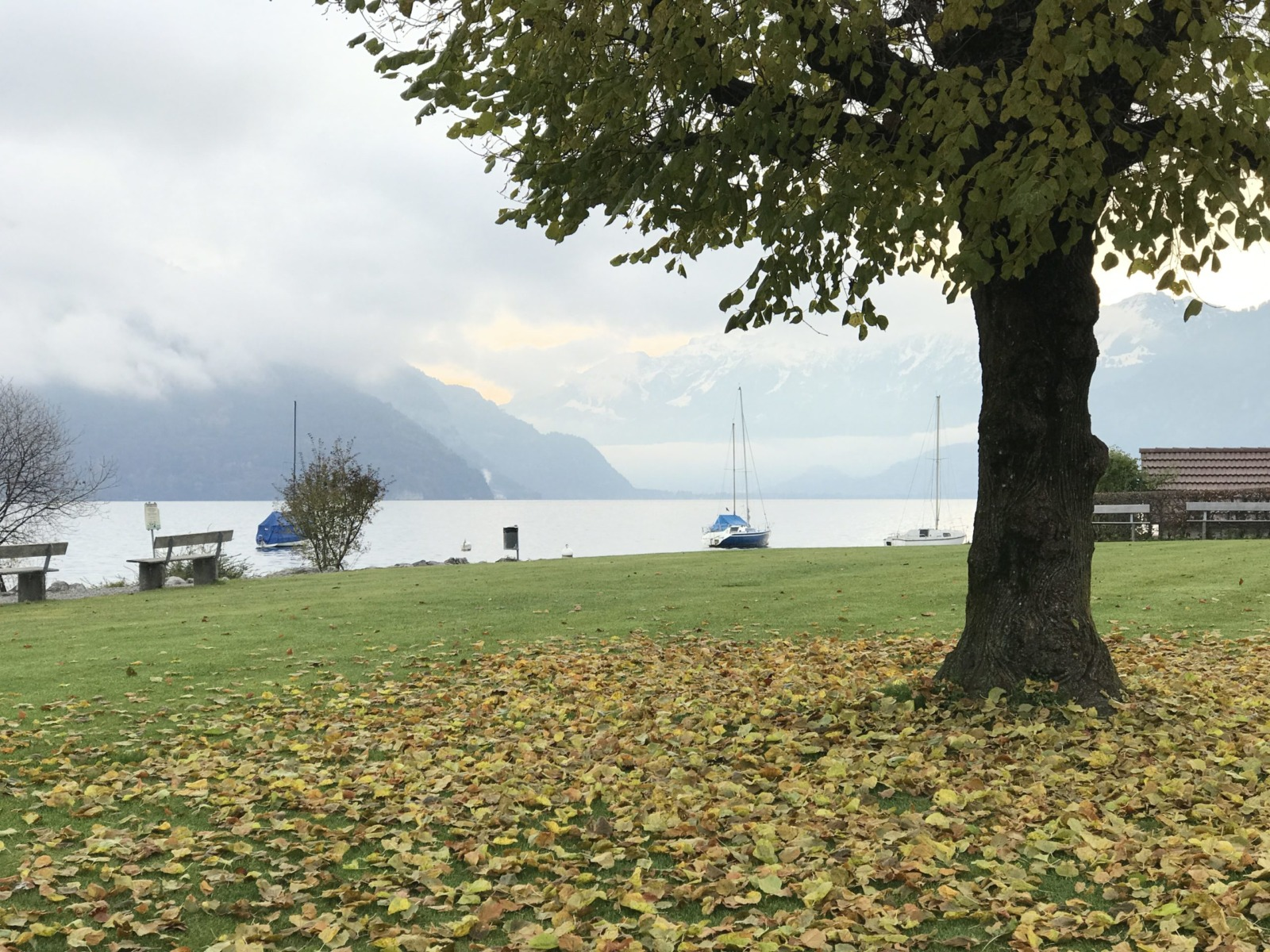 Faulensee on a grey autumn morning