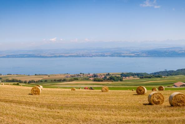 Lac de Neuchâtel, Switzerland