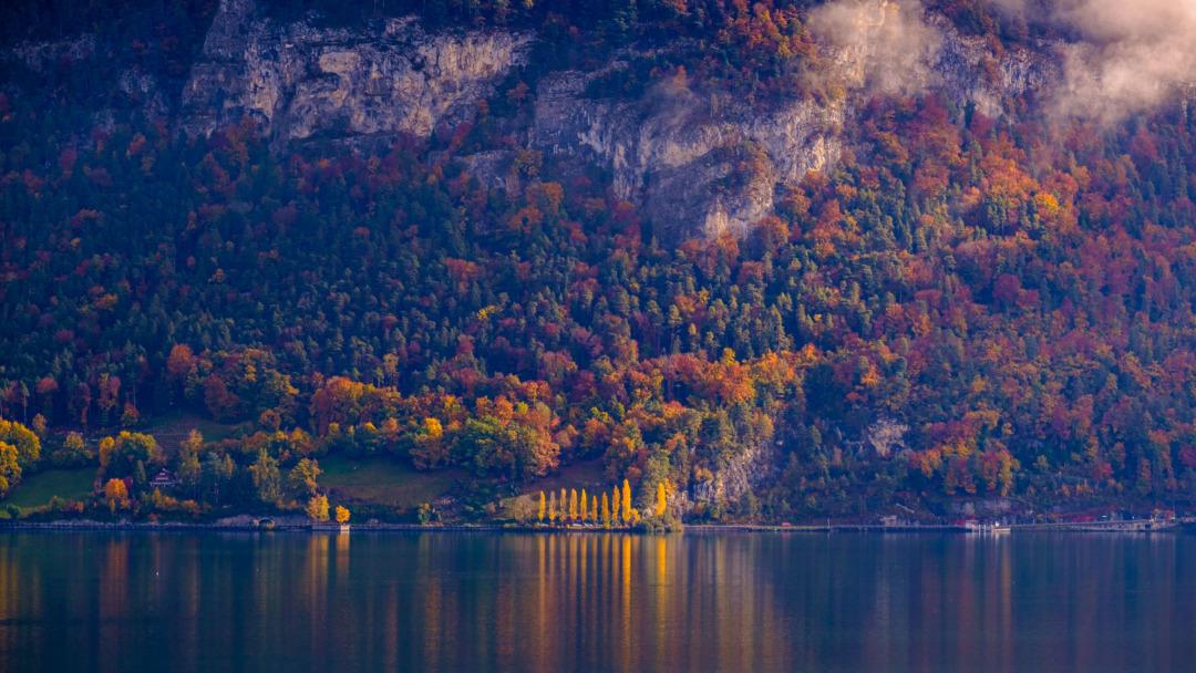 Autumn colour at Beatenbucht