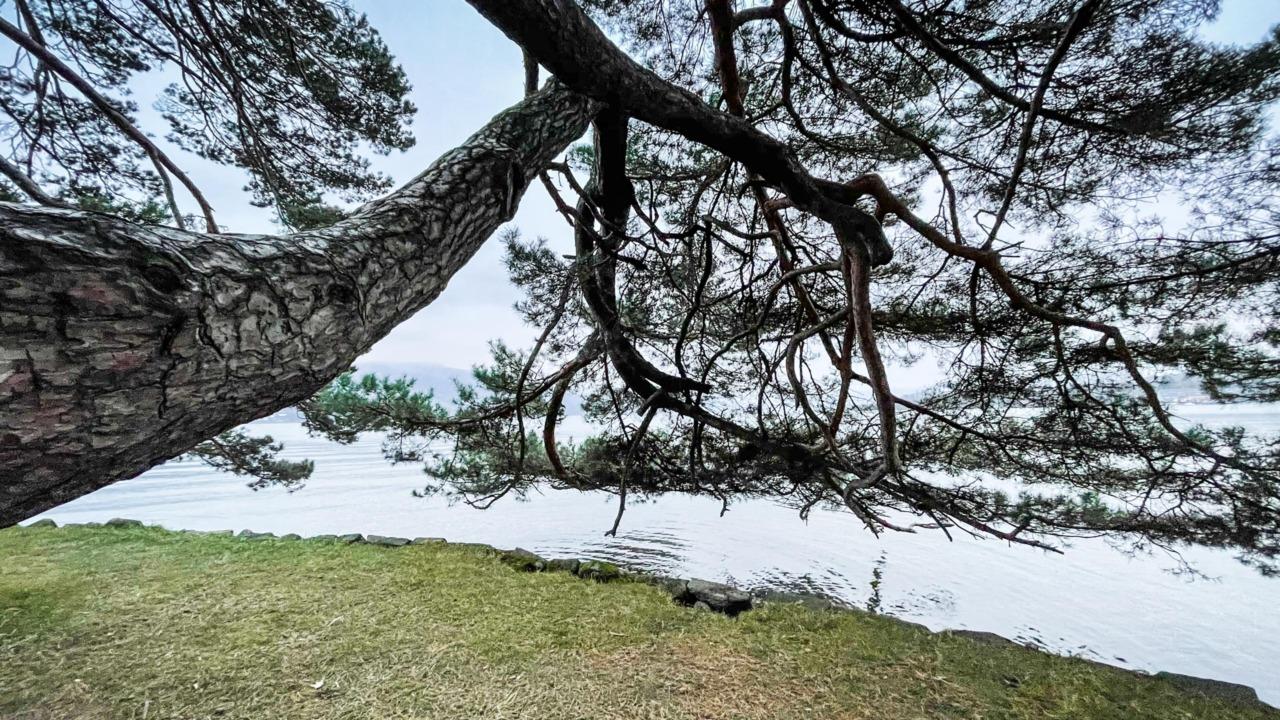 Bonstetten Park, Thun