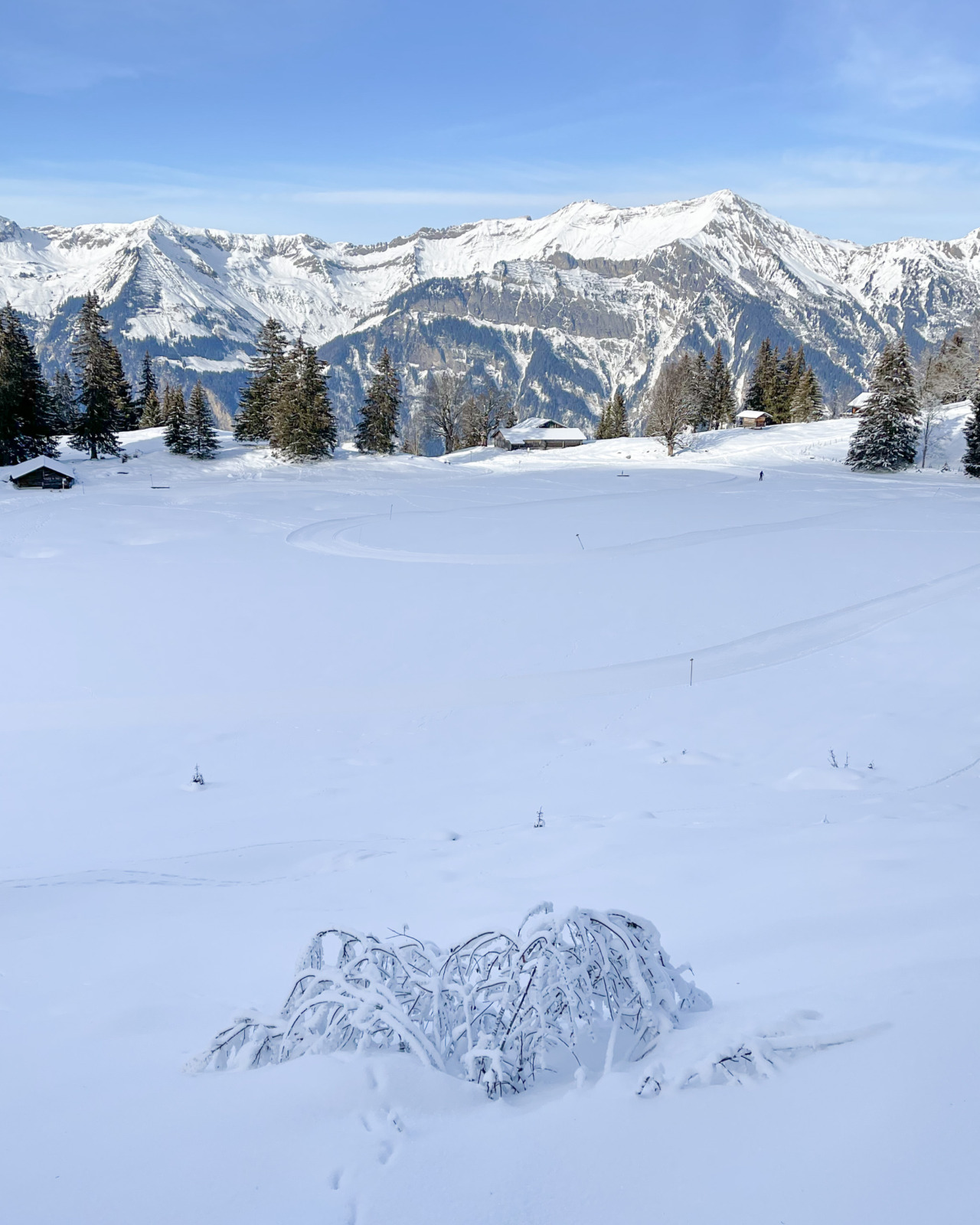 Axalp, Switzerland